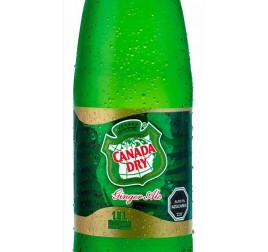GINGER ALE PET 1.5L (X6)